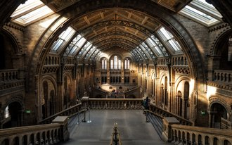 natural history museum virtual event online
